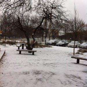 First Snow 2013